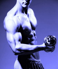 С чего начать качать мышцы. Пособие атлета