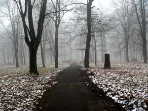 Страх одиночества. Алея. Туман