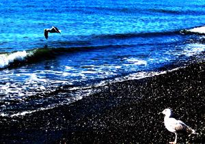 Счастье полета над морем