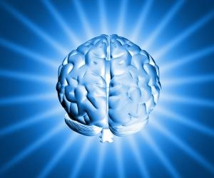 Мозг человека. Деградация человечества.
